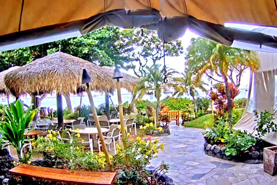 Live Webcam at the Hula Grill - Hawaii