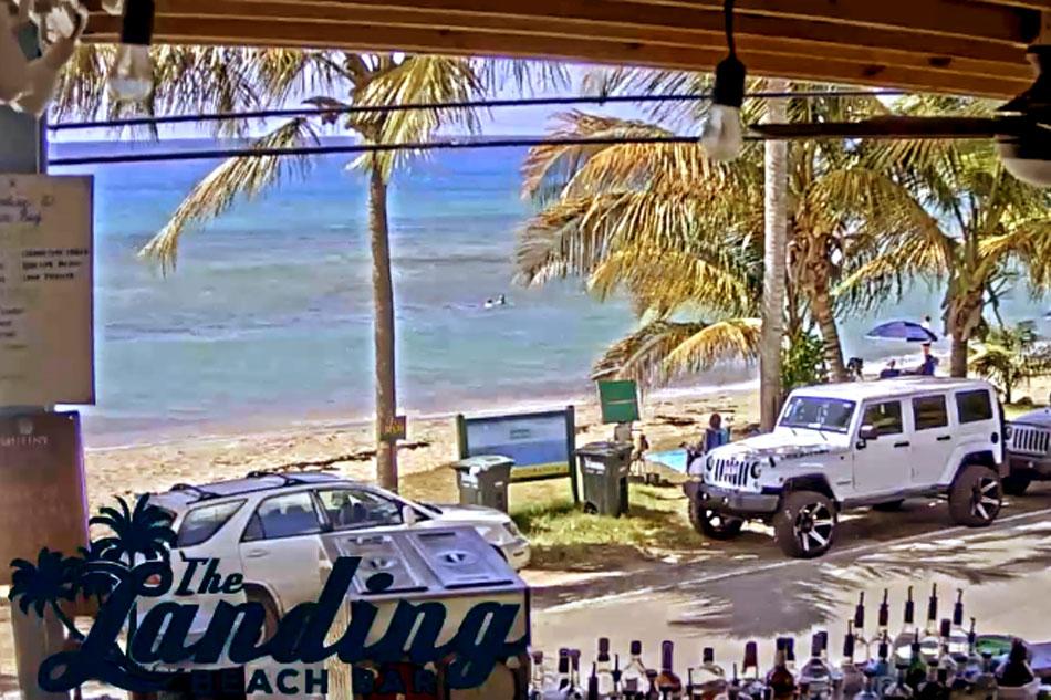 Leatherback Landing Beach Bar