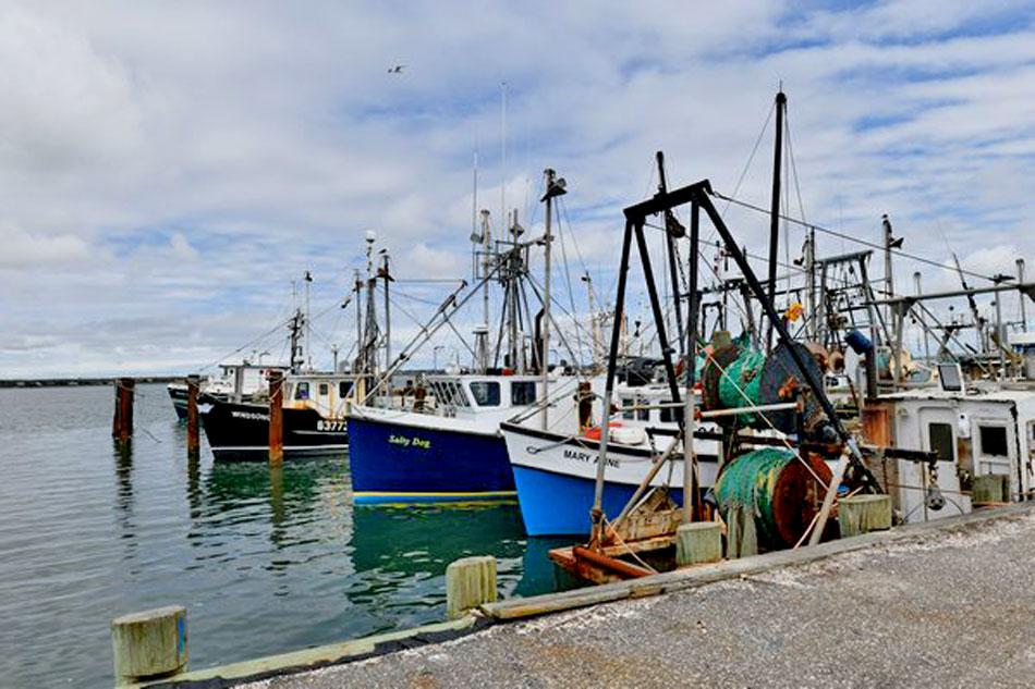 shinnecock fishing dock