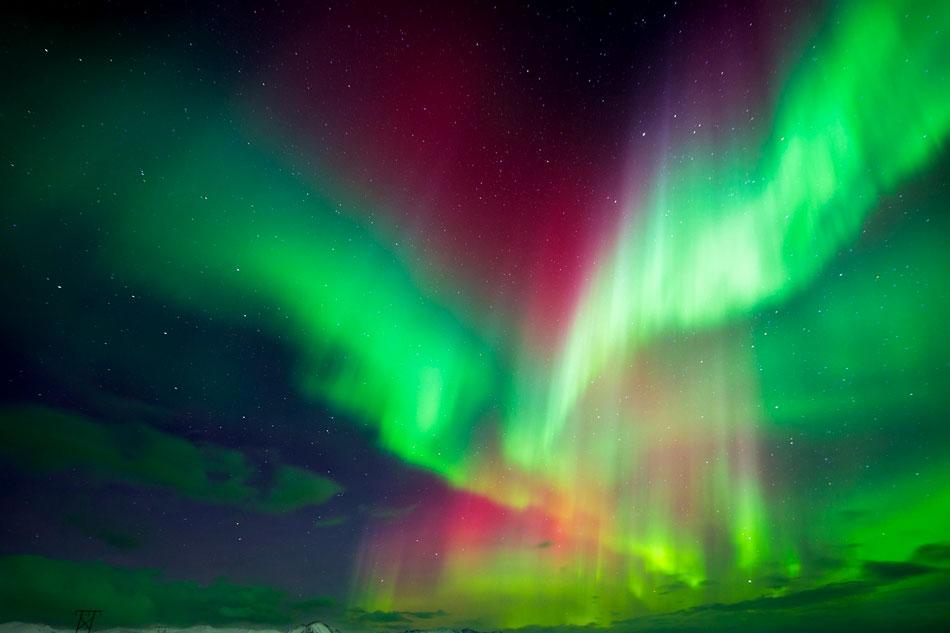 Northern Lights Webcam - Canada
